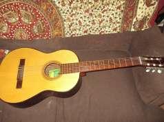 Guitarra criolla argentina- mandolina - flauta