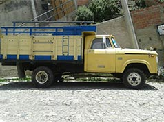 Camion marca dodge 1981