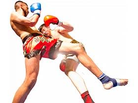 Cursos Particulares de Kick Boxing y MMA Japones
