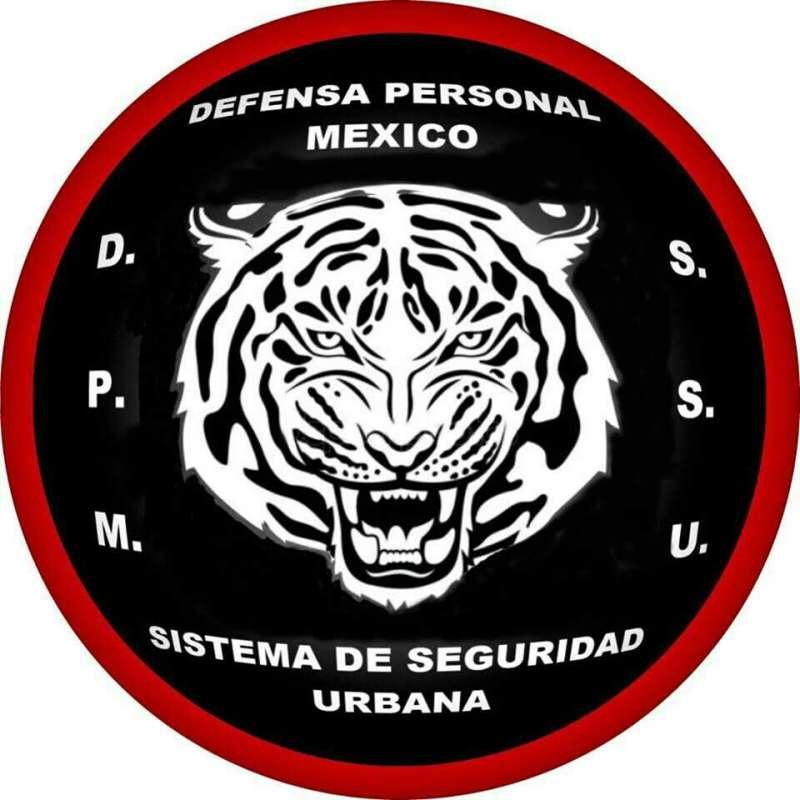 clases de Defensa Personal en Toluca
